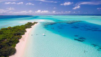 Rutas en kayak, snorkel, paseos en barca… ¡Los mejores planes para el verano!
